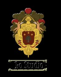 sar framed logo